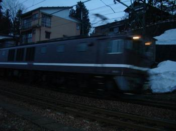 IMGP1045.JPG